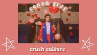 Conan Gray   Crush Culture (lyrics)