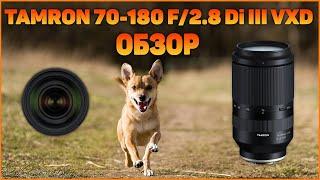 Полный обзор и тест Tamron 70-180 F/2.8 Di III VXD для Sony