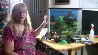 Setting up used fish tank - Make a craigslist used tank look new and special!