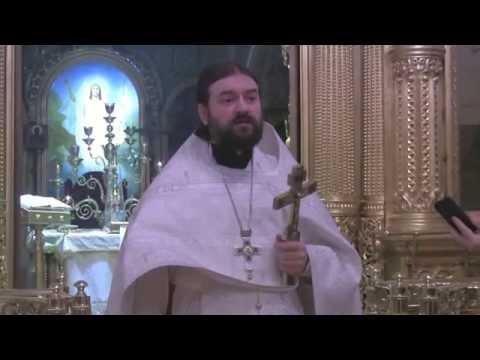 Скурат к.е. история православных поместных церквей