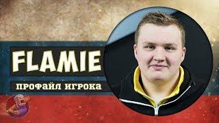 Профайл игрока Flamie из Navi в CS GO