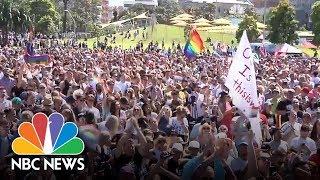 Australia Votes Yes In Same-Sex Marriage Survey | NBC News