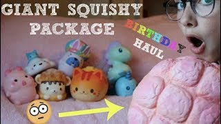 BIGGEST SQUISHY PACKAGE EVER | Birthday Haul *NOT CLICKBAIT*