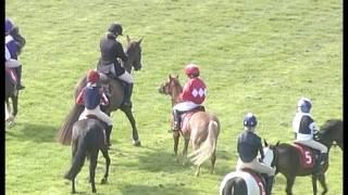 Pony racing authority 2016 wincanton race