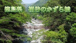 徳島観光祖谷のかずら橋渡ってみるとスリル満点?の観光IYAnoKazurabashiTokushimaJapan