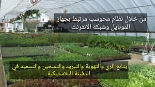 الزراعة المحوسبة في غزة ...
