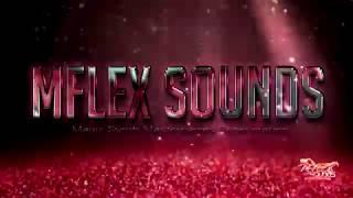 Mflex Sounds - Fly