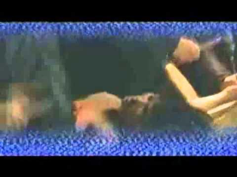 Blasphemation - Wallow in Feces.avi