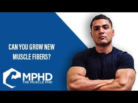 The Muscle PhD Academy Live #034: Can You Grow New Muscle Fibers? (Hyperplasia)