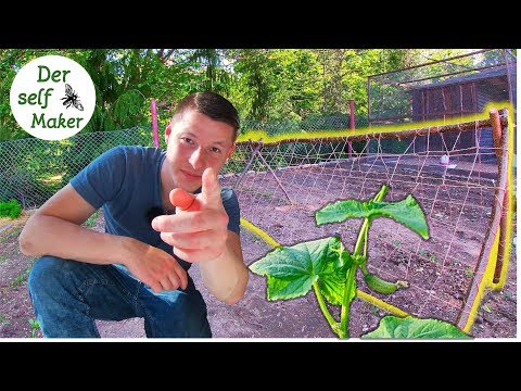 Im Selbstversorger-Garten   Rankgerüst selber bauen   Rankhilfe selber bauen   Der self Maker