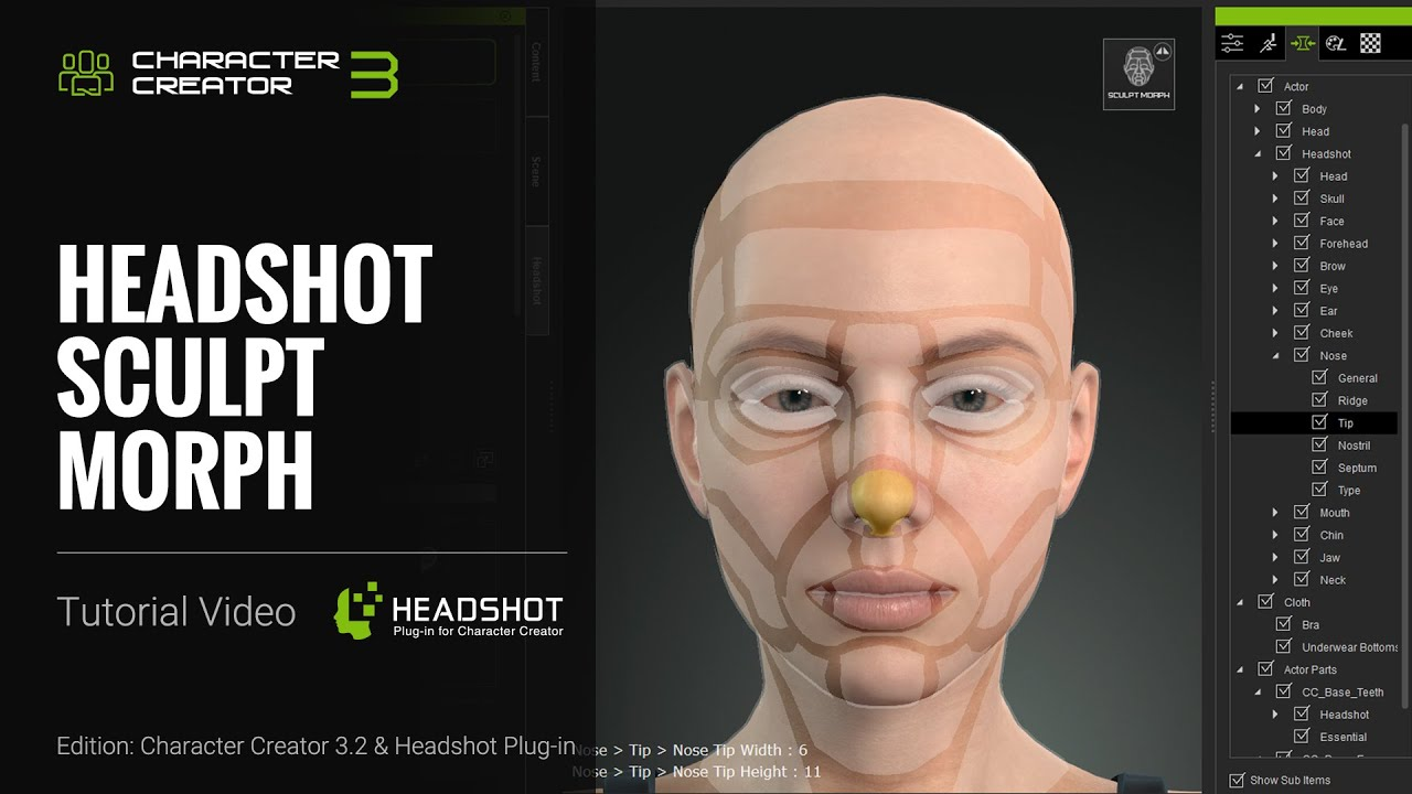 Headshot Plug-in Tutorial - Sculpt Morph