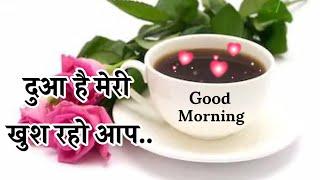 Good Morning Wishes 🌹 Good Morning Video 🌹 Good Morning Shayari 🌹 Wallpaper 🌹 Photos