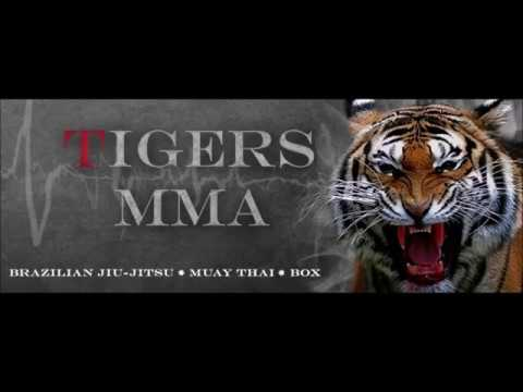 Training Tigers MMA 002 Fight and Force Gym