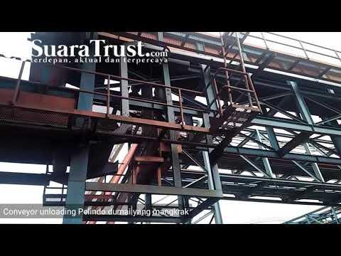 Video Conveyor Unloading Pelindo I Dumai Mangkrak