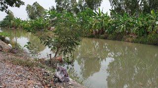 #ขายที่ดินราคาถูก #สระบุรี 58 ไร่ ๆ ล่ะ150,000 น้ำไฟพร้อม ติดถนน อยู่ใกล้ชุมชน 0983875209