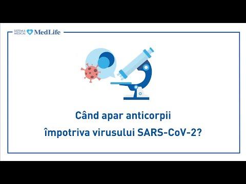 Hpv virus behandlung schwangerschaft