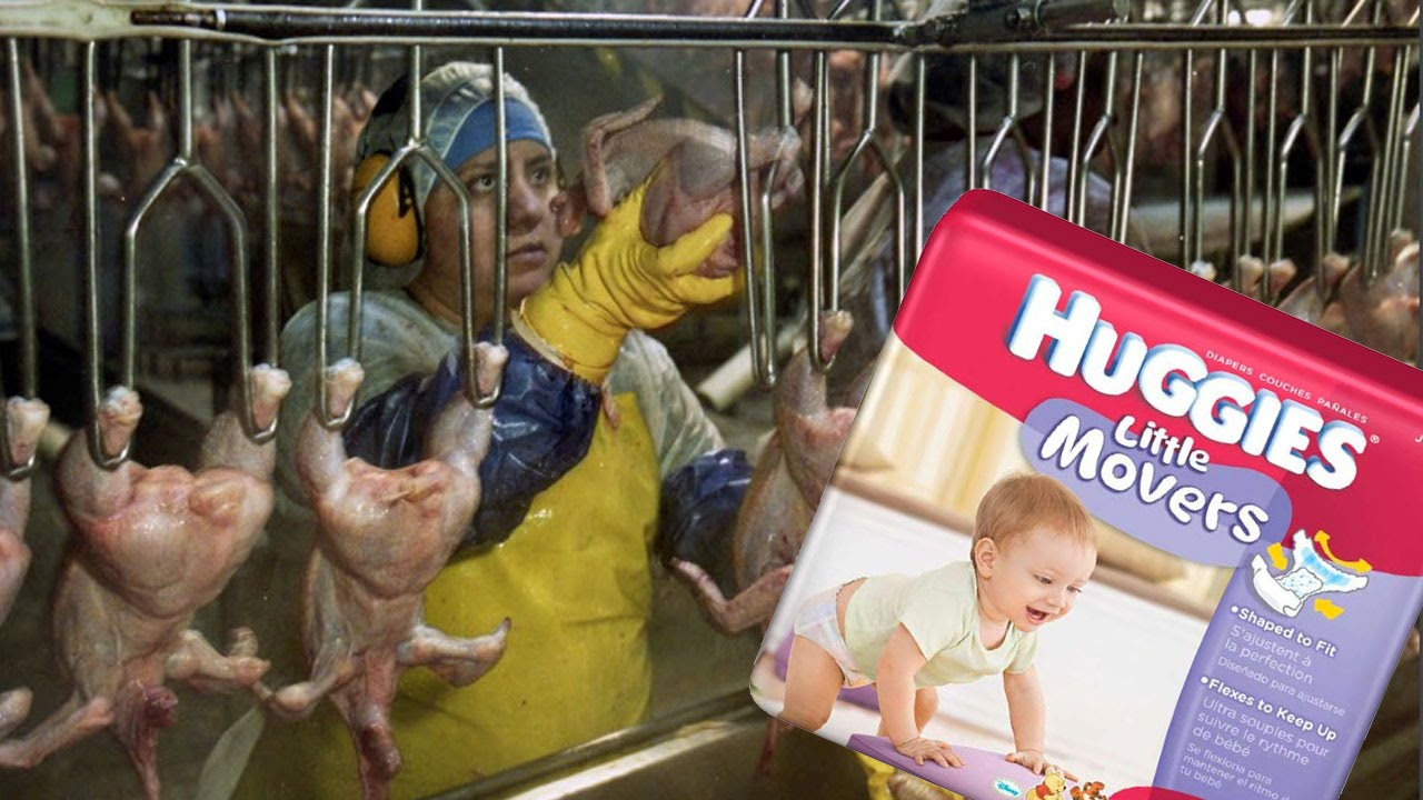 Why Chicken Factory Workers Are Forced To Wear Diapers thumbnail
