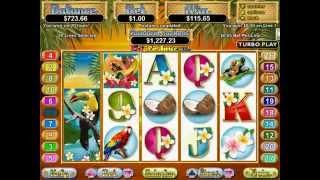 Triple Tucan Slot (RTG)   Freespins Feature - Big Win