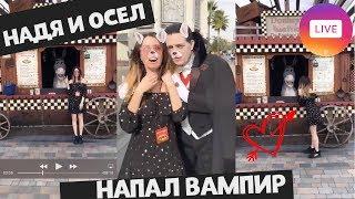 НАДЯ И ОСЁЛ / НАПАДЕНИЕ ВАМПИРА / ЭФИР В ИНСТАГРАМ