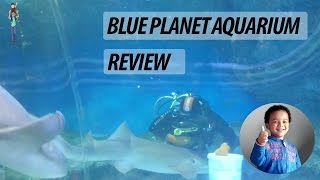 preview picture of video 'Blue Planet Aquarium Chester Review - Episode 10'