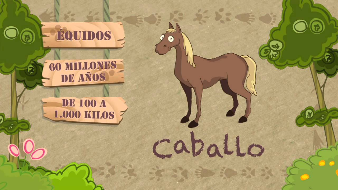 Las características del CABALLO