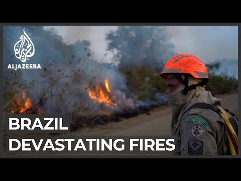Fires continue to ravage Brazil's Amazon rainforest, Pantanal wetlands