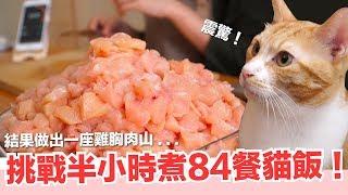 好味小姐挑戰!半小時煮完一週貓飯!【貓主食】好味貓鮮食廚房EP175