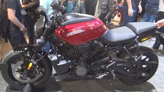 Introducing the Harley-Davidson Bronx 975.
