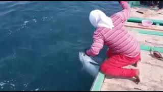 preview picture of video 'صيد سمكة التونة| قريات|سلطنة عمان|fishing Tuna|Quryat|Oman|new|2018'