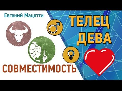 Телец и Дева. Гороскоп совместимости ♥ Любовный и сексуальный гороскоп Девы