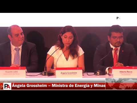 Adjudicación Proyecto Michiquillay