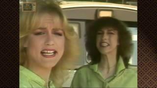 Maywood 1981