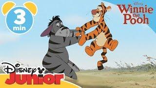 The Mini Adventures Of Winnie The Pooh | Tigger And Eeyore | Disney Junior UK