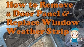 How to remove a door panel and replace window weather stripping