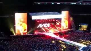 Avicii - I Could Be The One (LIVE at Summertime Ball 2015)