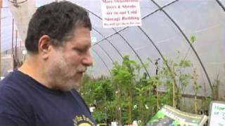 Raintree Nursery - Orca Broadcasting | Online Tree Nursery
