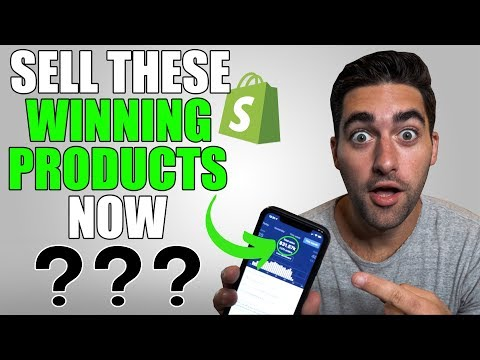 TOP $1000 Per Day Winning Products For Shopify Dropshipping | Q4 Winning Products