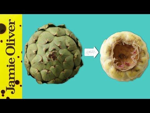 Papilloma vírus ember szemölcsök