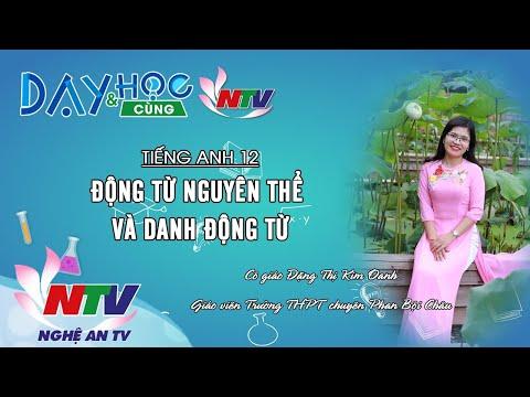 MÔN TIẾNG ANH 12 - ĐỘNG TỪ NGUYÊN THỂ VÀ DANH ĐỘNG TỪ | Infinitive and Gerund - 17H NGÀY 28/3/2020 (NTV)