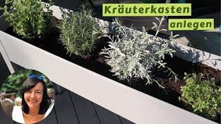 Kräuterkasten anlegen - Kräuter anpflanzen Balkon - Kräuterhochbeet - Kräuter auf dem Balkon