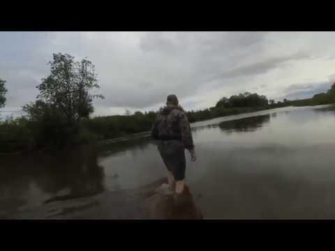 На реку за жерехом в слом погоды