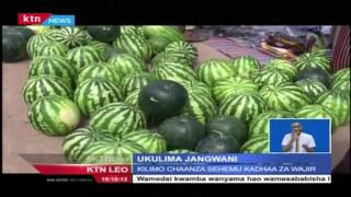 Kilimo chaanza sehemu kadha za Wajir