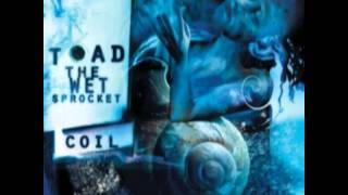 All Things In Time Toad The Wet Sprocket