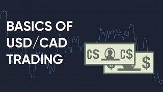 How to Trade the USD/CAD Forex Pair