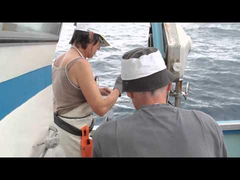 Rencontre homme libre alpes maritimes