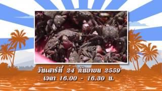 บรรเลงครัวทั่วไทย - จ.สมุทรสงคราม