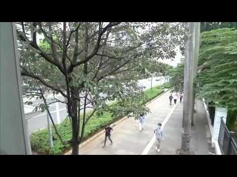 Video: PPKM Membawa Perbaikan Jawa - Bali