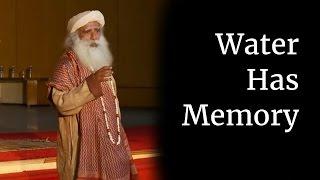 Water Has Memory - Sadhguru at IIT Madras (Part V)