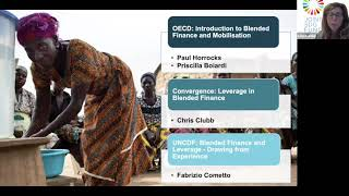 Financial Leverage and Mobilization of Resoruces for the SDGs