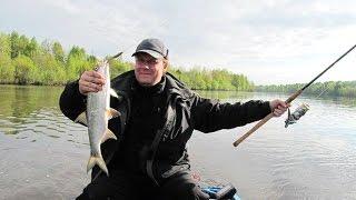 Турбаза с рыбалкой волгоград